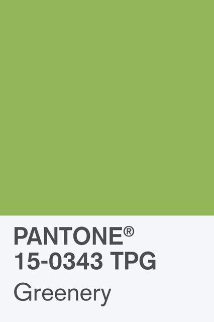 panton-2017